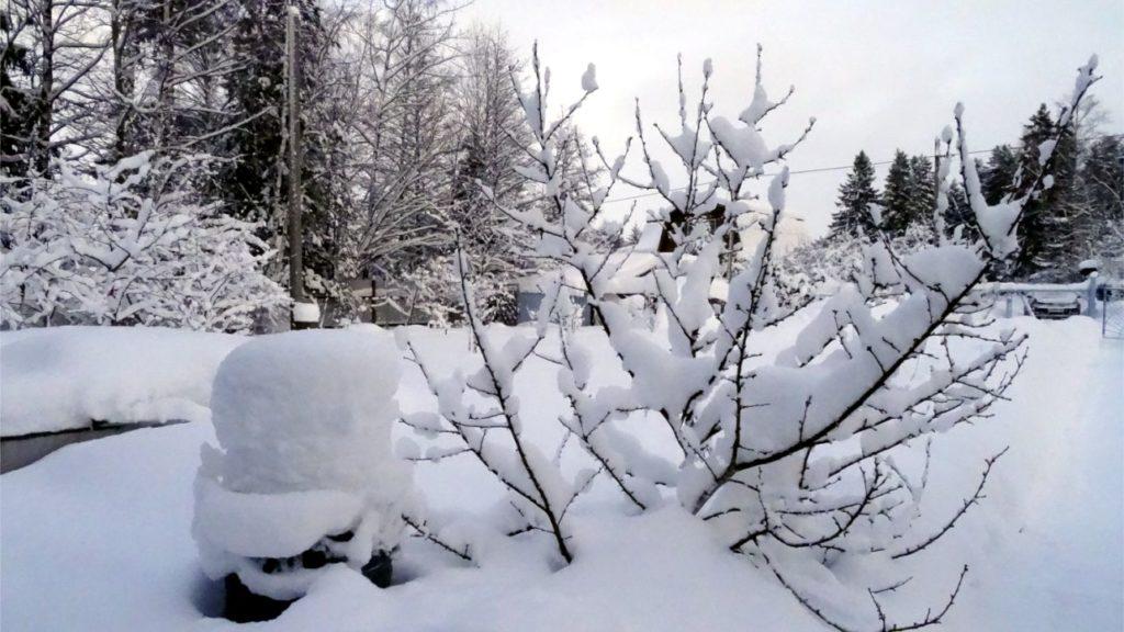 Зима за городом.